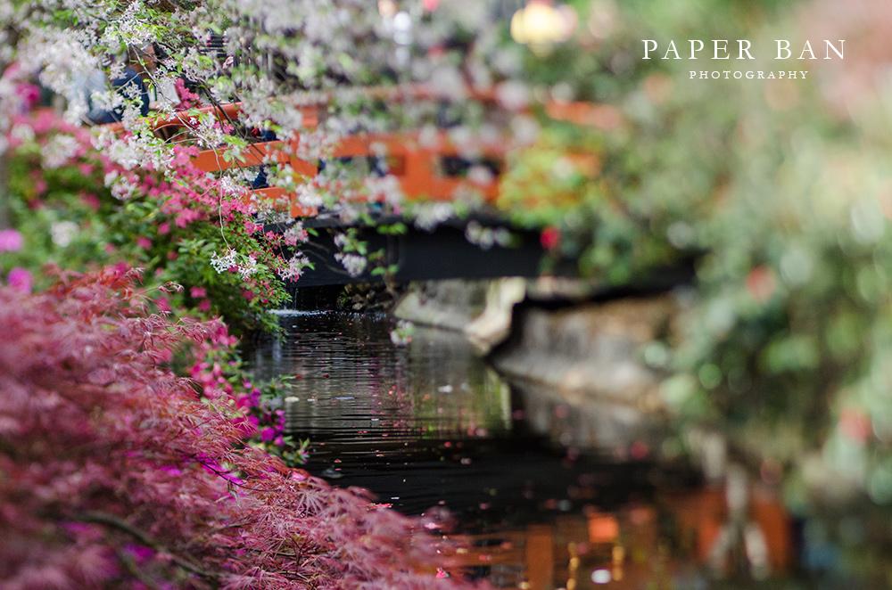 PaperBanPhotography_LosAngelesPhotographer_Spring_01