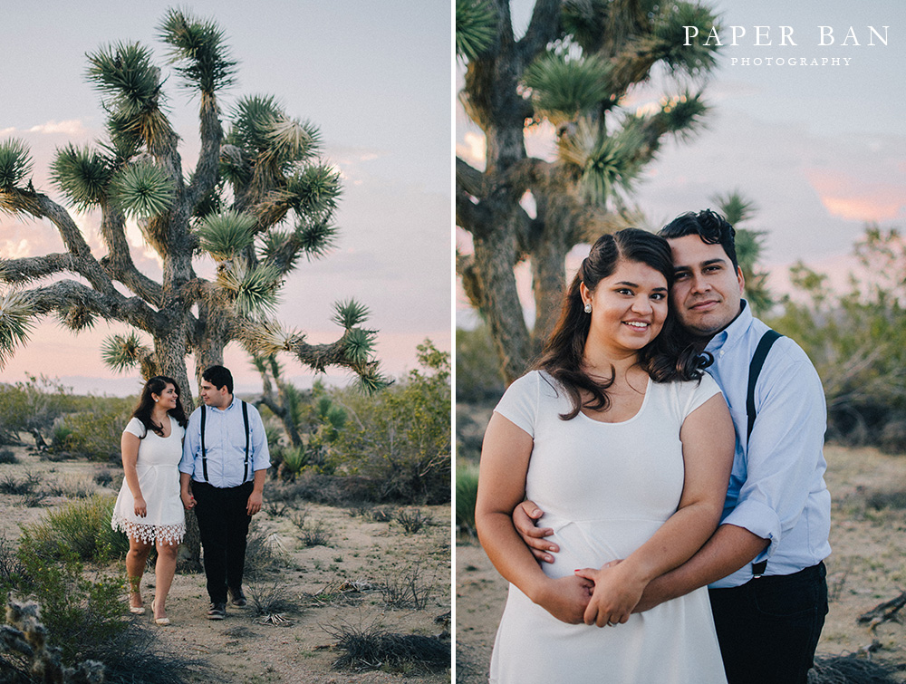 Joshua Tree Desert Engagement Photographer